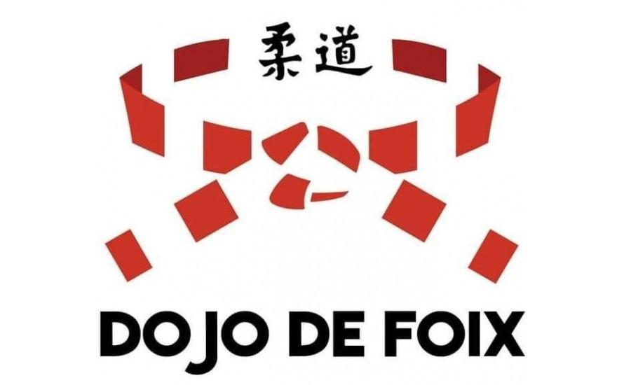 Logo du DOJO DE FOIX